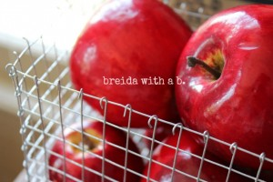 DIY wire basket